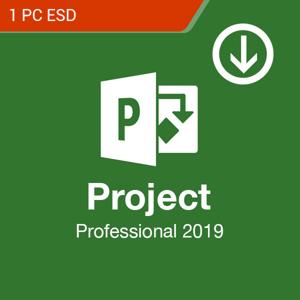 microsoft project professional 2019 1 pc esd